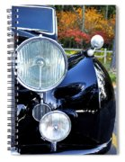 Autumn Rolls Spiral Notebook