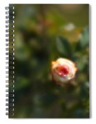 Autumn Rosebud Spiral Notebook