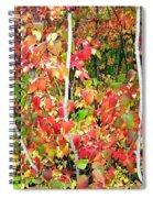 Autumn Sanctuary Spiral Notebook