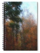 Autumn Scene 10-23-09 Spiral Notebook