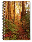 Autumn Splendor Spiral Notebook