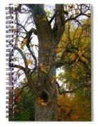Autumn Spook Spiral Notebook
