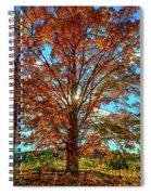 Autumn Star- Paint Spiral Notebook