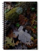 Autumn Still-life Spiral Notebook