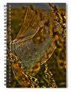 Autumn Sunrise With Spider Web Spiral Notebook