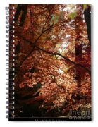Autumn Sunshine Poster Spiral Notebook