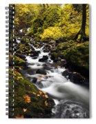 Autumn Swirl Spiral Notebook