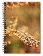 Autumn Tones Spiral Notebook