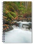 Autumn Treasure Spiral Notebook