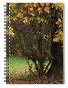 Autumn Tree 2 Spiral Notebook