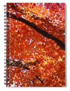 Autumn Tree Art Prints Orange Red Leaves Baslee Troutman Spiral Notebook