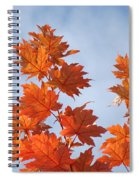 Autumn Tree Leaves Art Prints Blue Sky White Clouds Spiral Notebook