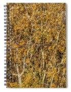 Autumn Tree Tangle Spiral Notebook