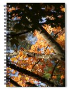 Autumn Trees 2015 Pa 01 Spiral Notebook