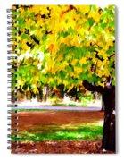 Autumn Trees 6 Spiral Notebook