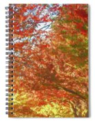 Autumn Trees Digital Watercolor Spiral Notebook