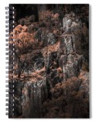 Autumn Trees Growing On Mountain Rocks Spiral Notebook