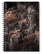 Autumn Trees Growing On Mountain Rocks Spiral Notebook