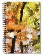 Autumn Trees In The Fog Spiral Notebook