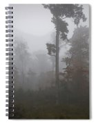 Autumn Trees In The Mist Spiral Notebook