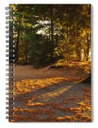 Autumn Trees Near Lake Spiral Notebook