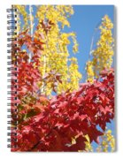 Autumn Trees Red Yellow Fall Tree Blue Sky Landsape Spiral Notebook