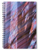 Autumn Trees Spiral Notebook