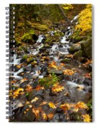 Autumn Tumbles Down Spiral Notebook