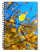 Autumn Twist Spiral Notebook