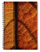 Autumn Veins Spiral Notebook