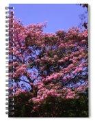 Autumn View1 Spiral Notebook