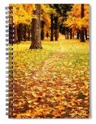Autumn Walk In Spokane Spiral Notebook