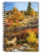 Autumn Waters Of The Susan River Spiral Notebook