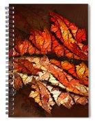 Autumn Wind Spiral Notebook