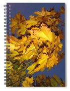 Autumn Winds Spiral Notebook