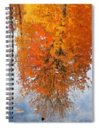 Autumn With Colorful Foliage And Water Reflection 19 Spiral Notebook
