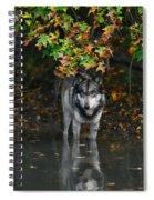 Autumn Wolf Spiral Notebook