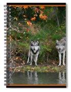Autumn Wolf Study  Spiral Notebook