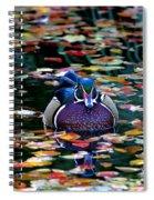 Autumn Wood Duck Spiral Notebook