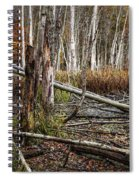 Autumn Woodland Marsh Scene Spiral Notebook