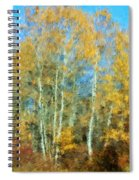 Autumn Woodlot Spiral Notebook