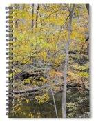 Autumn Woods 2 Spiral Notebook
