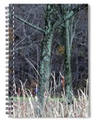Autumn Woods Spiral Notebook