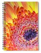 Autumn Yellow Flower Spiral Notebook