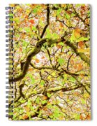Autumnal Colours Spiral Notebook