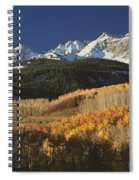 Autumnal View Of Aspen Trees And The Spiral Notebook
