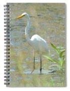 Autumn's Egret Spiral Notebook