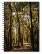 Autumns Fire Spiral Notebook