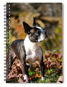 Autumn's Glamour Spiral Notebook