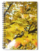 Autumns Gold Spiral Notebook